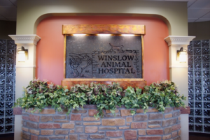 Welcome to Winslow Animal Hospital!
