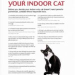 Parasite Prevention Indoor Cat-small