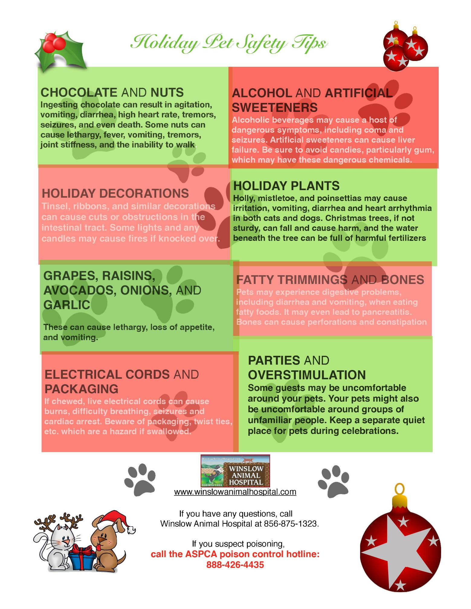 Holiday Pet Safety Tips 1 Page 001