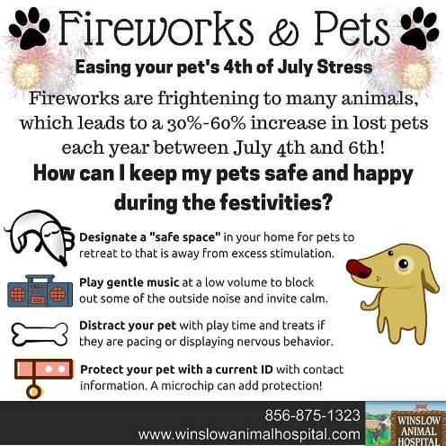 Fireworks & pets